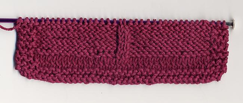 Dragonfly Dishcloth