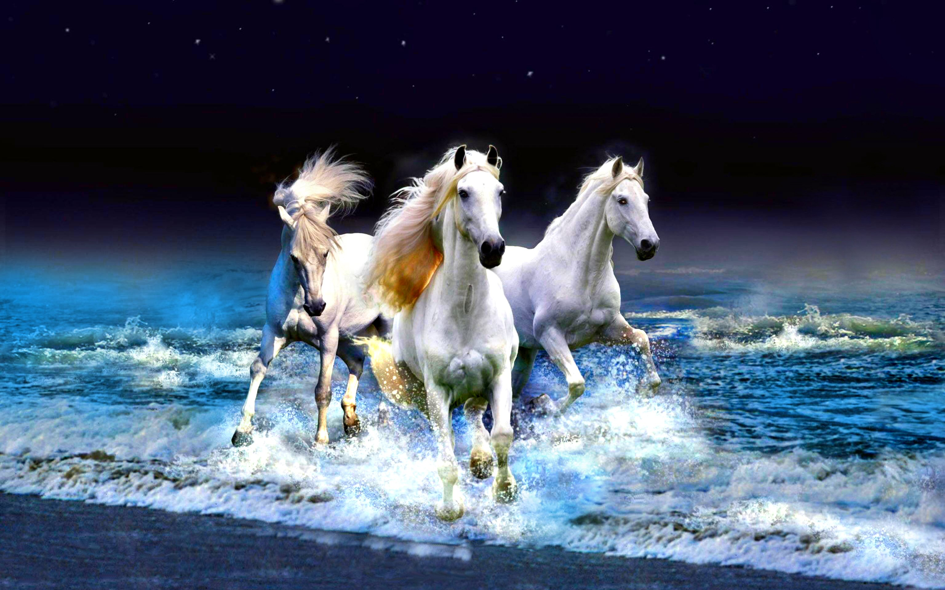 964 horse hd wallpapers   background images - wallpaper abyss