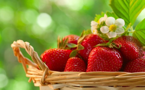 Image result for Strawberries hd