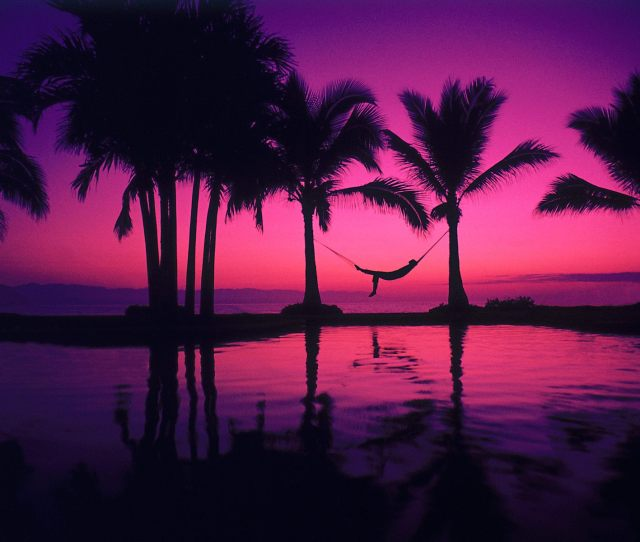Colors Images Color Purple Hd Wallpaper And Background Photos