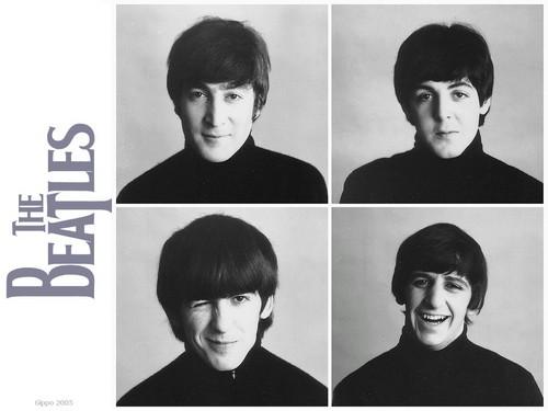 The Beatles - the-beatles Wallpaper