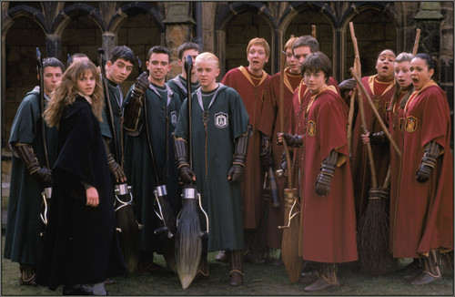 Quidditch Sport