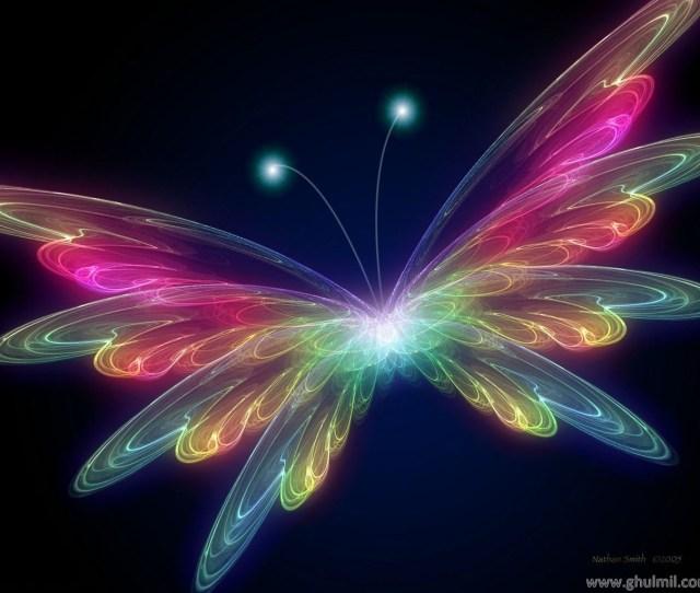 Butterflies Images 3d Butterfly Wallpaper Hd Wallpaper And Background Photos