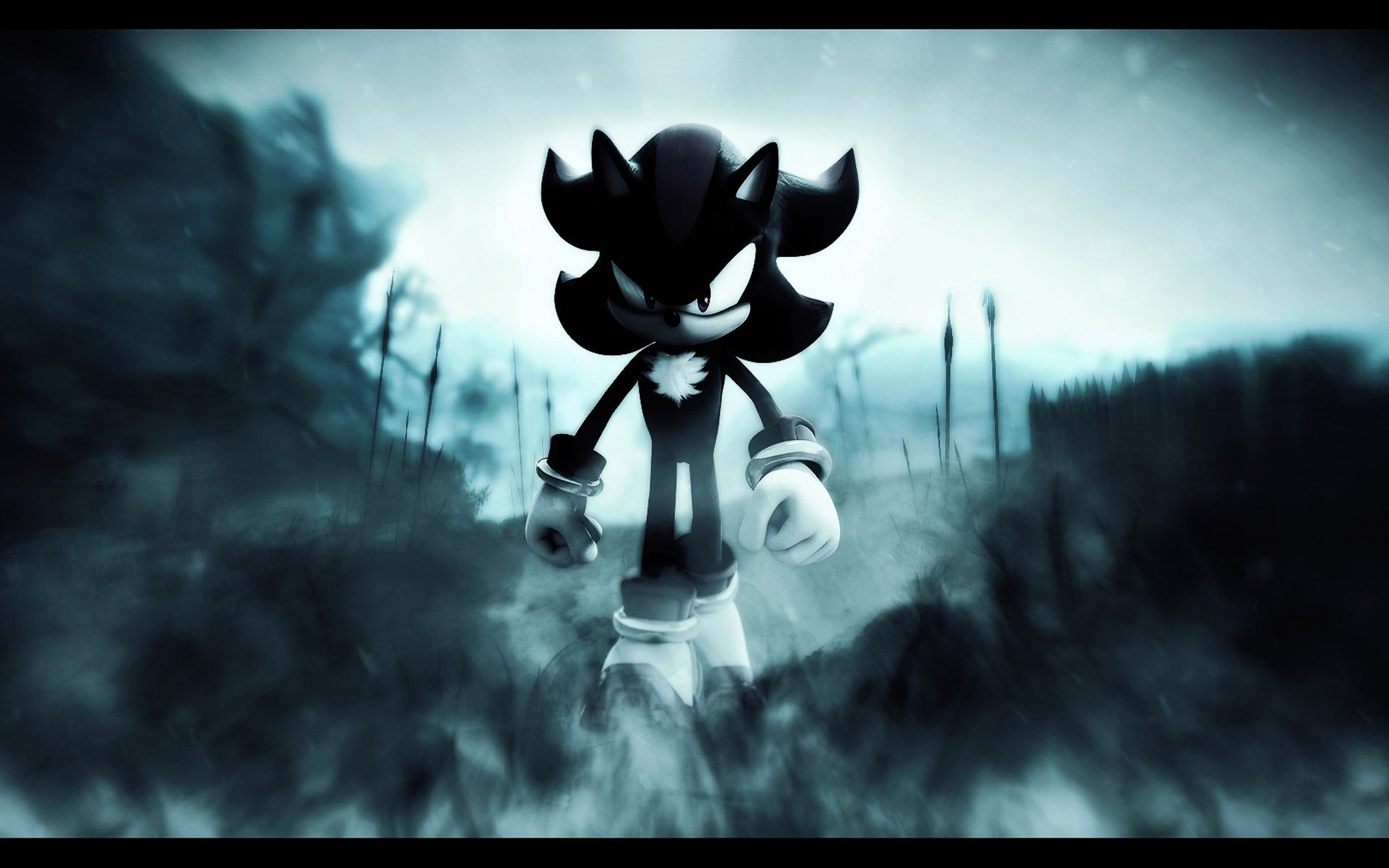 Drawings Shadow Cool Hedgehog