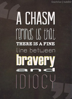'A chasm reminds us that there is a fine line between bravery and idiocy.'