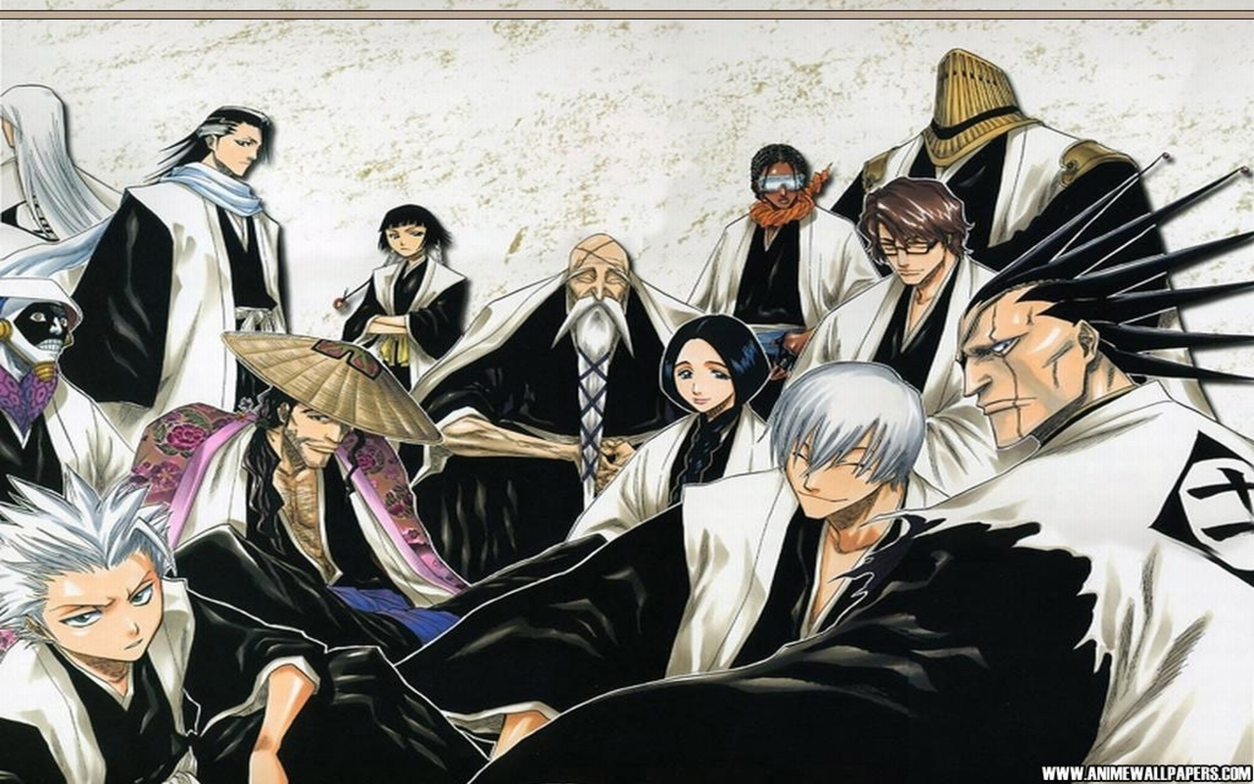 captains gotei 13 full hd wallpaper and background | 2560x1600