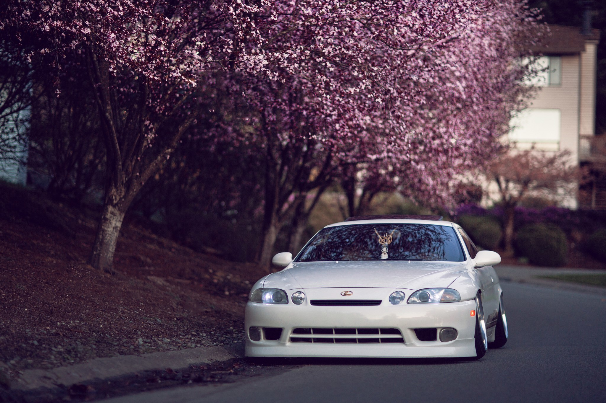 Lexus Full HD Wallpaper And Background Image 2048x1365