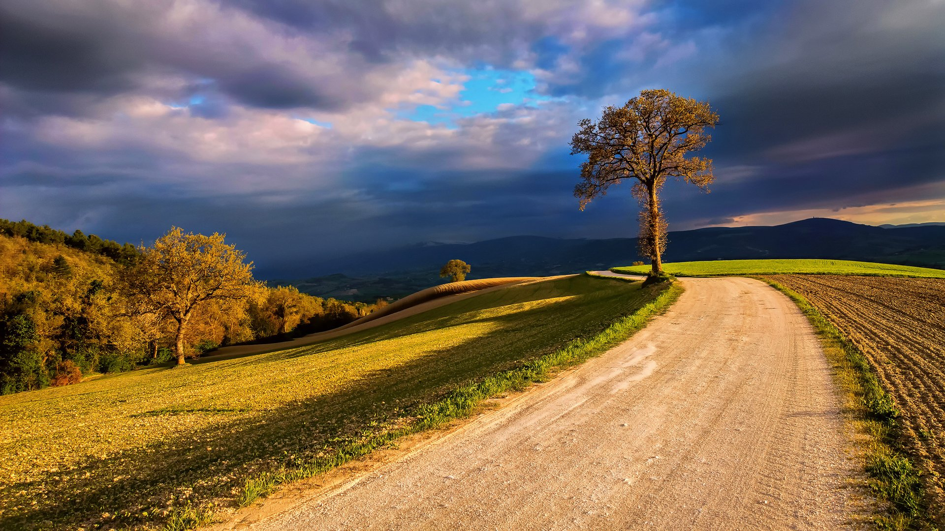 Dirt Road In The Country HD Wallpaper Background Image