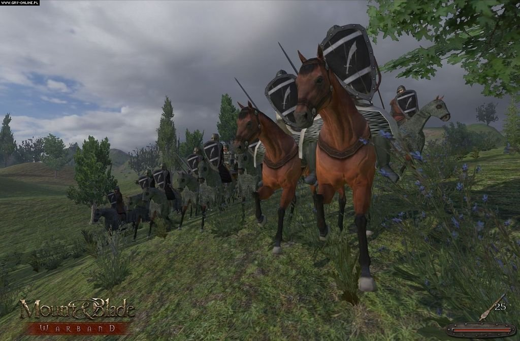 Mount & Blade: Warband crack