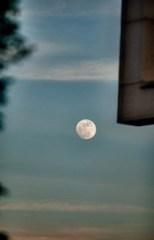 moon, Florham Park, NJ