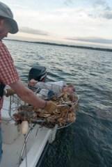 crab pot, gary, david