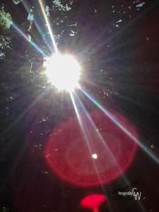sun, rays