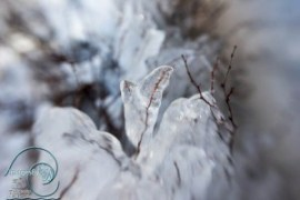 Ice Formations, lensbaby