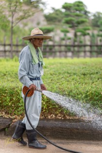 How could I possibly leave out a portrait from a Gardener? These hard working guys are doing such a tremendous job to keep everything as close to nature, yet, presented in an order. Himeji, Japan
