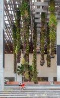 Vertical Gardens in Perez Art Museum