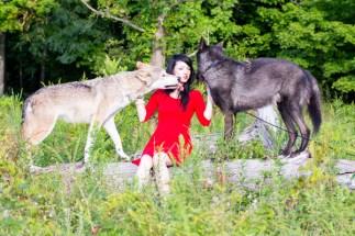 Wolf kissies