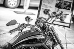 Harley5123-Editbw copy