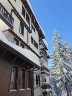 greenlife-snow