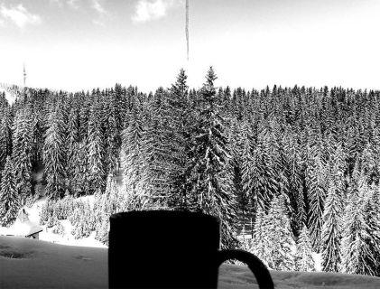 cafe pamporovo