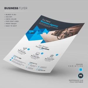 Agency Business Flyer