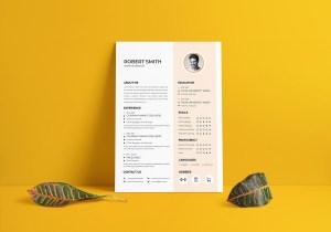 Professional Vector Resume CV Design