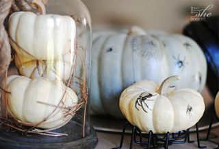 Transitional fall accents for the home. Pumpkin, spiders.