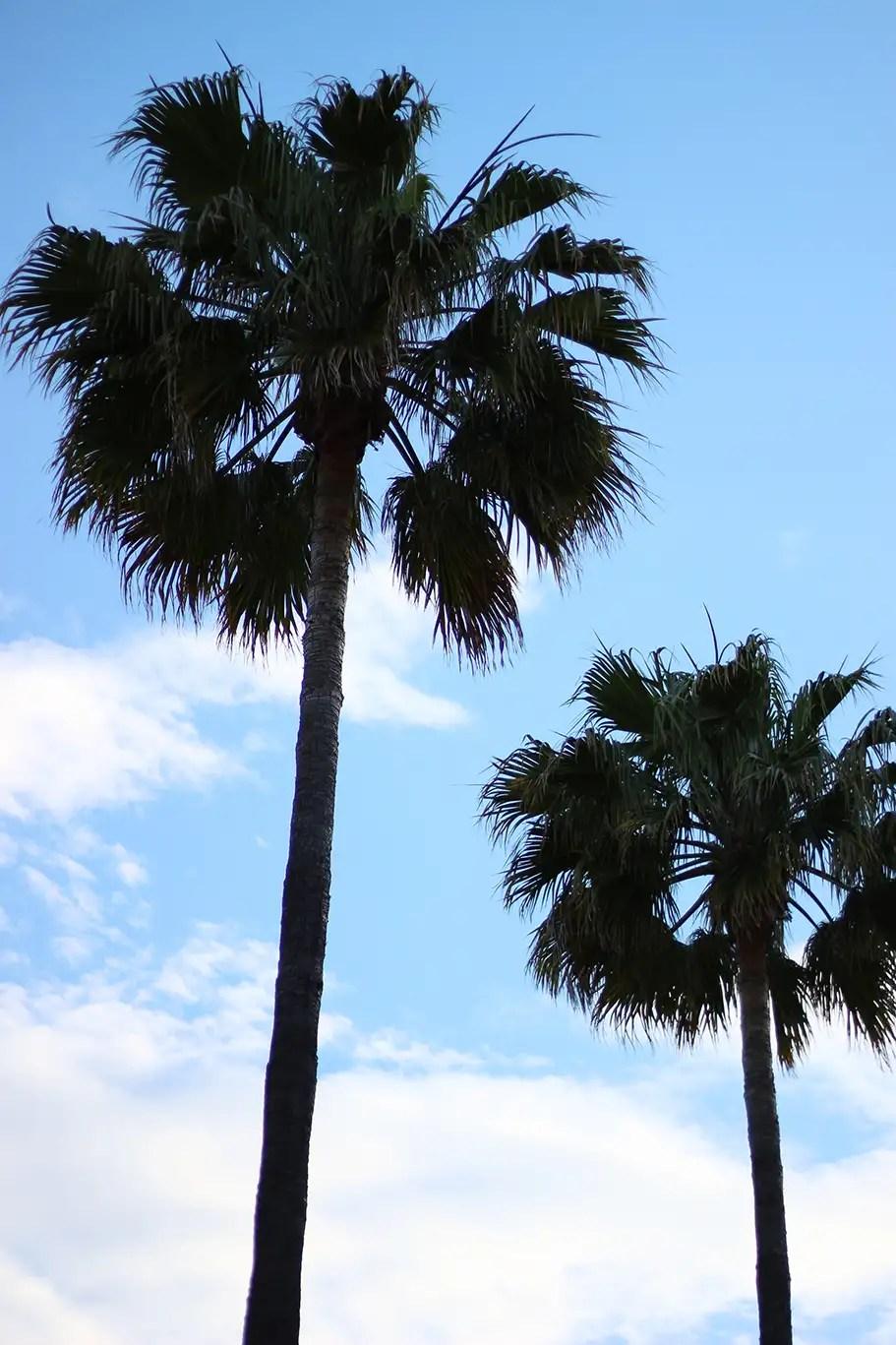 pool party, robe bleue zara, zara, robe zara, col bardot, havaianas, tong, sac plage, h&m, chapeau paille zara, chapeau paille, blog mode, blogueuse mode, hipanema, antibes,