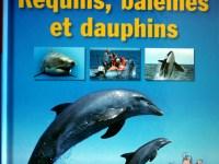 livre jeunesse https://estore-sslserver.eu/my-eshop.info/epages/b0b25e08-fc03-4843-af9f-54a7bc5372d5.admin