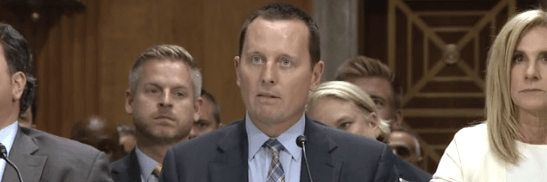 Image result for photo of richard grenell
