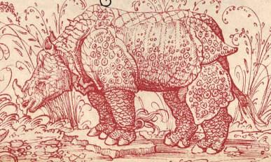 Altdorfer, rhinoceros d'après Dürer, 1515.
