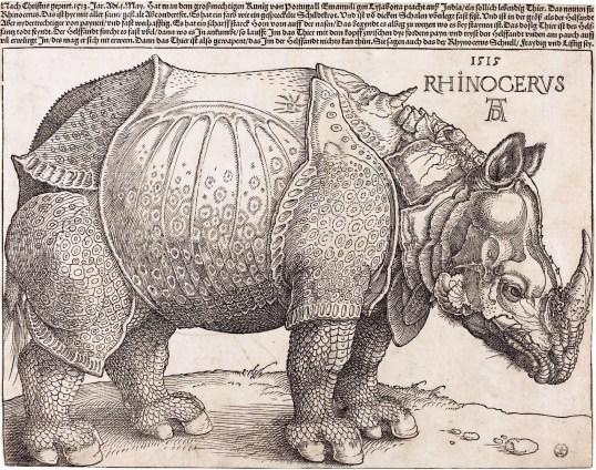 Dürer, Rhinoceros, 1515.