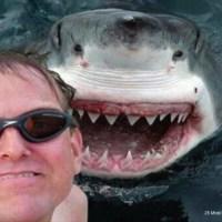 La revanche du selfie tueur