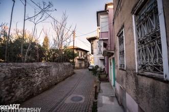 2016yds_sen6692 © LEVENT ŞEN