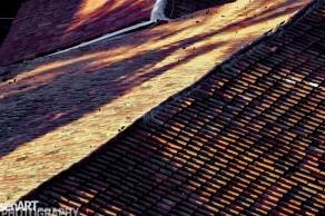pr2010aads02_34 © LEVENT ŞEN