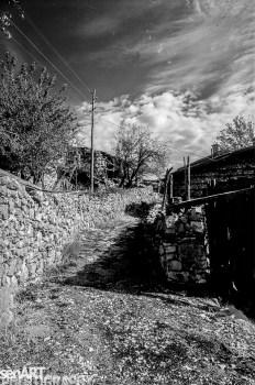 pr2016aaef_17© LEVENT ŞEN