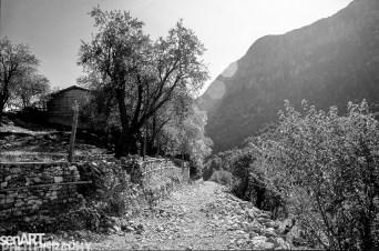 pr2016aaef_30© LEVENT ŞEN