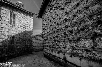 pr2016aaef_34© LEVENT ŞEN