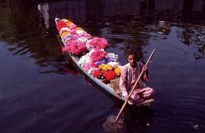 Daily Life in Vale of Kashmir, India, 1982 (30)