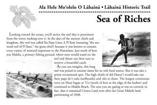 04-Sea_of_Riches