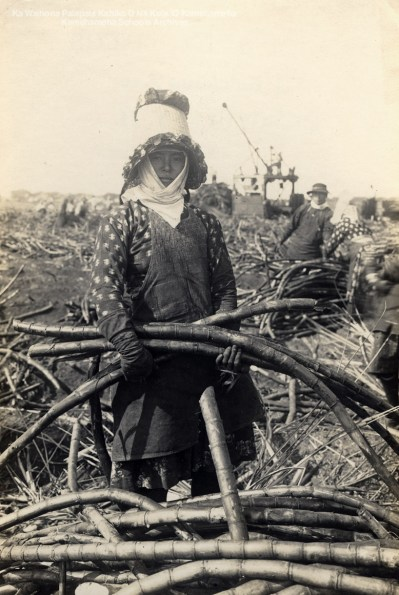 14-1-14-11 =female worker on Maui 1915-rjb-Kamehameha Schools Archives
