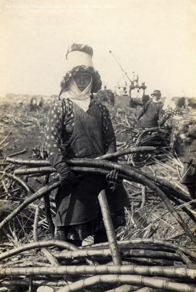 14-1-14-11 =female worker on Maui 1915-rjb-Kamehameha Schools Archives