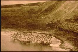 1975-Halape- view of the Halape coast after the 1975 tsunami.