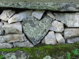 7QDT_bartlebys_hearts_in_nature
