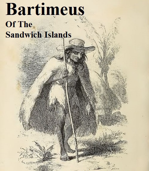 Bartimeus of the Sandwich Islands-Bingham