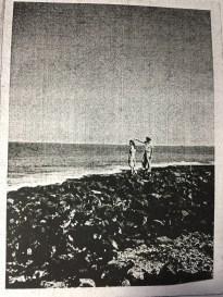 Beach Scene at Kauakaiakaola Heiau