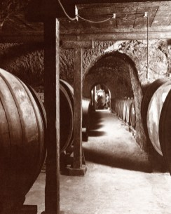 Beringer_Barrel_Cellar-1877