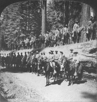 Buffalo Soldiers in Mariposa Grove Yosemite-(NPS)-1905