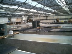 Anuenue Fisheries Research Center-tanks
