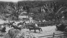Cattle Pens-Napoopoo-early 1900s-DLNR