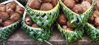 Coconut container-nuts